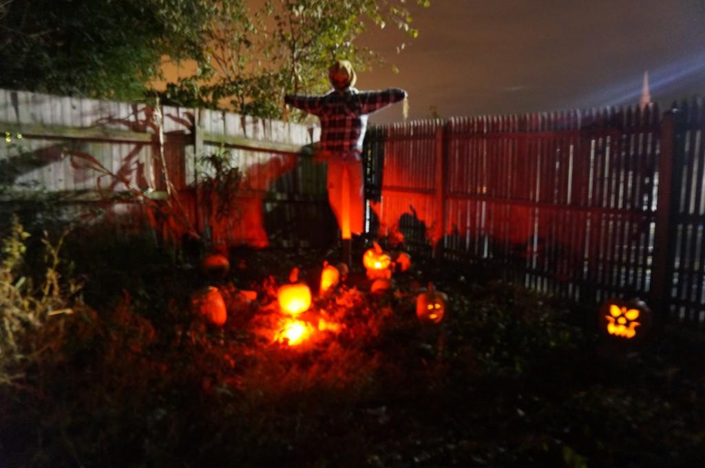 Bridget's_Haunted_Pumpkin_patch