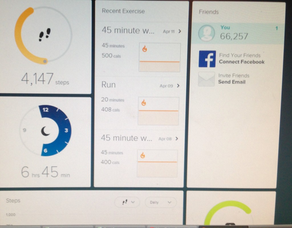 Fitbit page