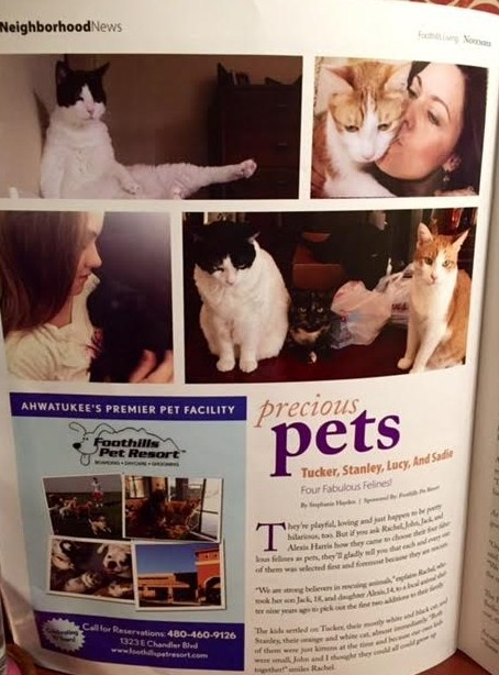 1st page pics