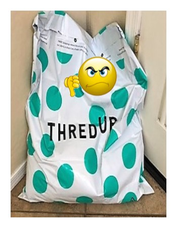 Thumbs Down To Thredup Online